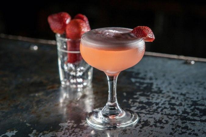 WARD_III_cocktails_Wagtouicz_11